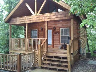 A Beary Pine Cabin near Dollywood in Pigeon Forge - Pigeon Forge vacation rentals