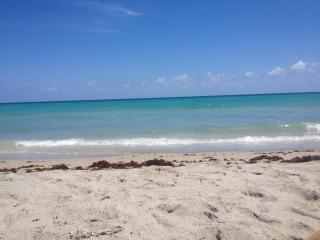 Beach View! - Fort Lauderdale vacation rentals