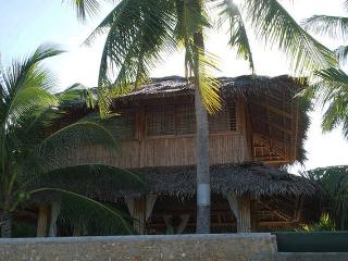 Bamboo house front beach and swimming pool - Moalboal vacation rentals