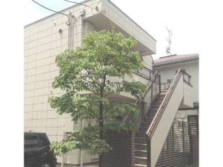 Cozy Apartment Near Shinjuku - Kanto vacation rentals