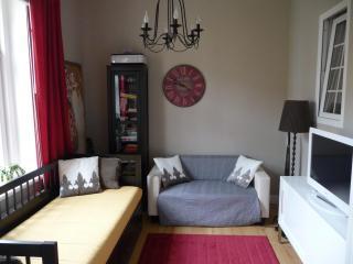 Luxury Cozy Lesser Town Apartment - free Wi-Fi - Bohemia vacation rentals