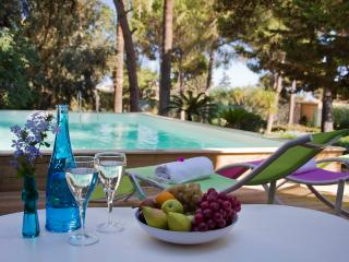 VILLA DYONISUS: wonderful villa with private pool - Sicily vacation rentals