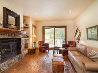Terraces 1301 - 2 BR, 2 BA - Sleeps 4 - True Ski-in and Ski-out - The ski mountain is just steps away - Telluride vacation rentals