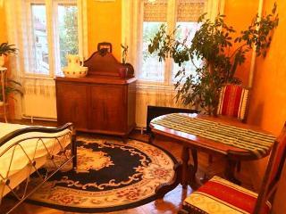 Debrecen belvárosában, nyugodt környezetben található kiadó szoba. - Debrecen vacation rentals