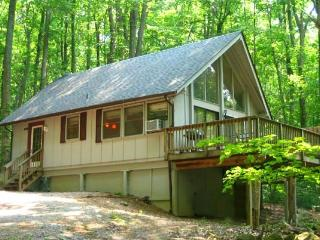 HOT TUB HEAVEN # 3  CABINS !  DOG FRIENDLY! - Berryville vacation rentals