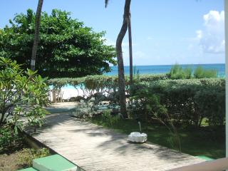 Sand Acres/Boungainvilla Beach Resort - Saint Philip vacation rentals