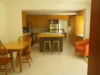 Executive Appartment walking distance to Hamilton - Bermuda vacation rentals