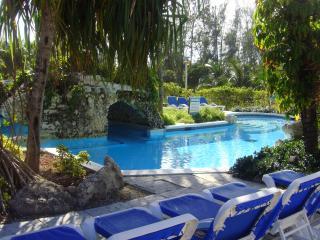 Sunrise Beach Villas - 1 Bedroom Deluxe Beachfront Condo - Paradise Island vacation rentals