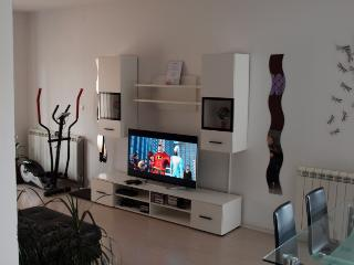 Master apartment - Slatine vacation rentals