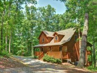 APPALACHIAN PROMISE- 3BR/3.5BA- SECLUDED CABIN SLEEPS 8, MOVIE ROOM, WIFI, POOL TABLE, FOOSBALL, SATELLITE TV, GAS LOG FIREPLACE, HOT TUB ON COVERED PORCH, GAS GRILL, AND A FIRE PIT! ONLY $150 A NIGHT! - Blue Ridge vacation rentals