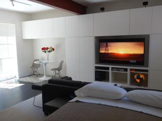 SANTA BARBARA Montecito modern - Santa Barbara vacation rentals