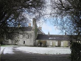 An Irish Castle - County Cavan vacation rentals