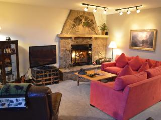 Sun Vail 13C - Mountain View 2 Bedroom, 2 Bath - Vail vacation rentals