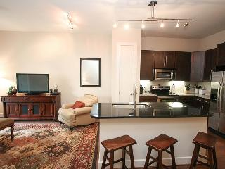 City Centre Luxury One Bedroom Apartment - Katy vacation rentals