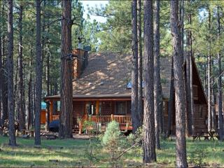 Log Cabin On National Forest - Pinetop vacation rentals