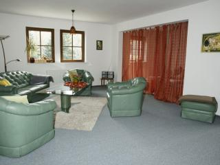 Vacation Apartment in Königstein (Saxony) - 1453 sqft, spacious, room for 8 people, digital TV connection… - Koenigstein vacation rentals
