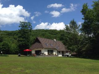 Private home on secluded estate near Hunter Mt, NY - Hunter vacation rentals