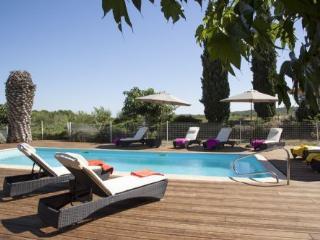 Mas de Thau - Muscadet - Pouzolles vacation rentals