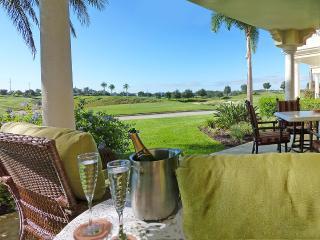 Award winning Reunion condo Stunning Terrace Views - Reunion vacation rentals
