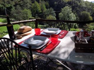 Cottage in pietra Monte Amiata vicino alle Terme - Selva di Santa Fiora vacation rentals