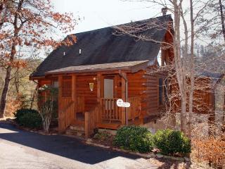 Dancing Bear - Sevierville vacation rentals