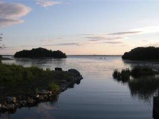 Daggis Cottage - Mountnugent vacation rentals