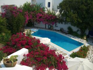 Traditional pool villa in the center of Naoussa - Naoussa vacation rentals