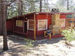 Lily Cottage - Idyllwild vacation rentals