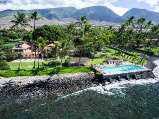 MAUI HOME AWAY FROM HOME $145 SLEEPS 4 2bed/1bath - Lahaina vacation rentals
