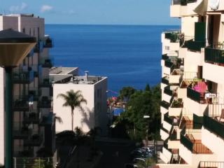 A Slice of Paradise - Madeira Island-Tourist Area - Funchal vacation rentals