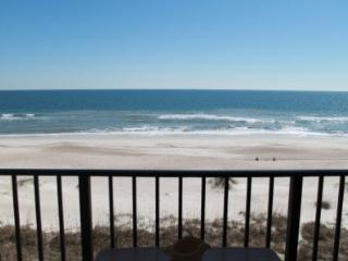 Oceans of Amelia- 314 ~ RA45789 - Fernandina Beach vacation rentals