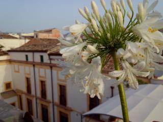 Eleganza, Intimita', Confort - Palermo vacation rentals