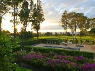 Waikoloa Villas G-201 $100/N special for 7+ nights - Waikoloa vacation rentals