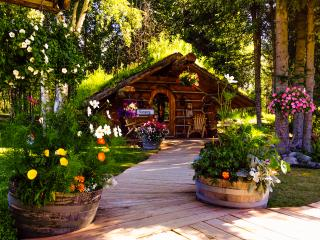 Alaska Hobbit Cabin - Trapper Creek vacation rentals