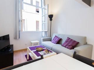 Cosy Studio in Aix-en-Provence historical downtown - Aix-en-Provence vacation rentals