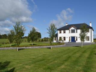 Stunning modern five bedroomed house sleeps 10 - County Limerick vacation rentals