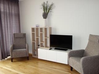 Cozy Apartment + parking - Riga vacation rentals