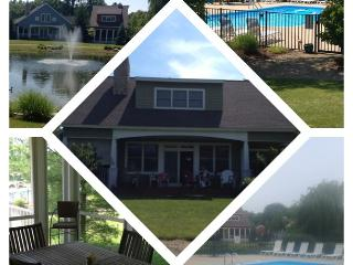 Modern Style House In Downtown New Buffalo w/ Pool - Michiana vacation rentals