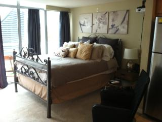Downtown Studio, Petco Park, Convention Center - Pacific Beach vacation rentals