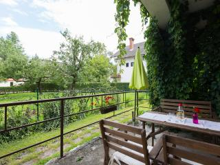 Apartments Koman Bled - Begunje na Gorenjskem vacation rentals