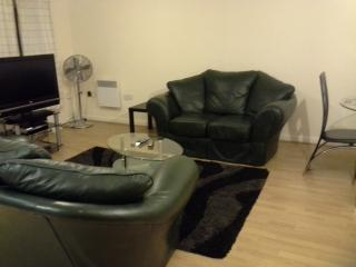 Beautiful 1 Bedroom Apartment,sleeps 4 - London vacation rentals