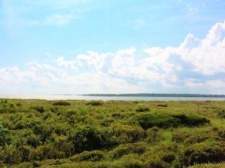 Pelican Watch 1379 - Seabrook Island vacation rentals