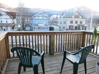 Cozy Cabin Feel Across from Hunter Mountain - Hunter vacation rentals