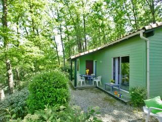 Chalet T6 - Domme vacation rentals