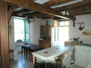 Historic Riverside Home, southern Loire Valley - Angles sur l'Anglin vacation rentals