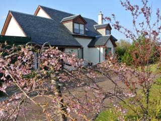 Luxury Self Catering Aviemore- Sealladh Breagh - Aviemore vacation rentals