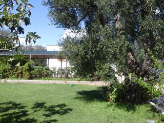 Appartamento in Villa a 50 metri dal mare - Mattinata vacation rentals