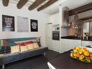 Beautiful Modern Studio For Rent In Barcelona - Barcelona vacation rentals
