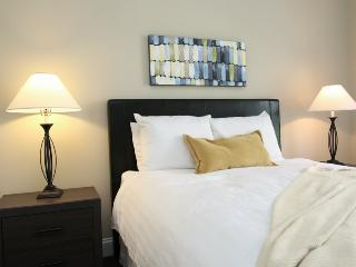 Luxurious Center City 600 Lofts 209 - Greater Philadelphia Area vacation rentals