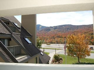 Mountain Green 3-E18 - Killington Area vacation rentals